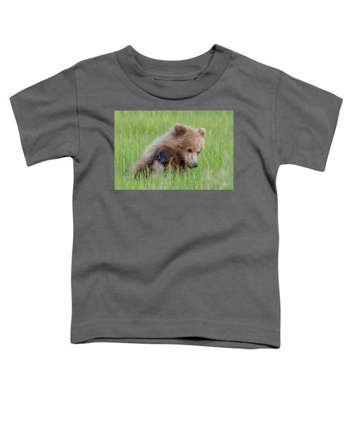 A Coy Cub Toddler T-Shirt