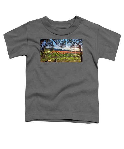 A New Day In Napa Toddler T-Shirt