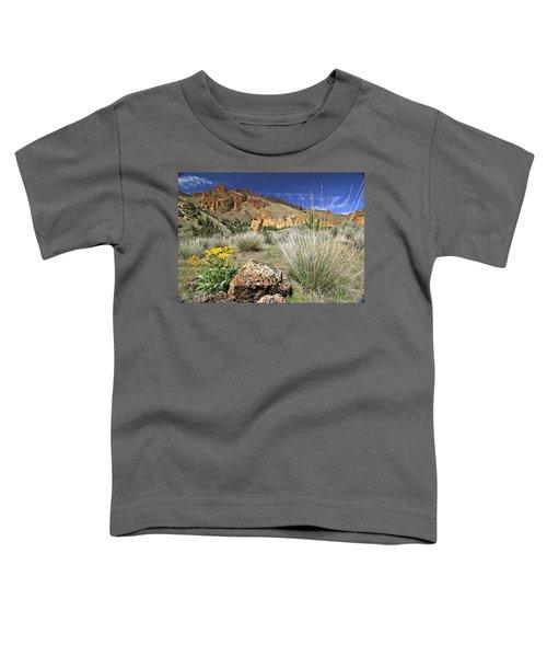 Above Juniper Gulch Toddler T-Shirt