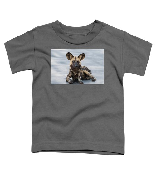 African Wild Dog Resting On A Road Toddler T-Shirt