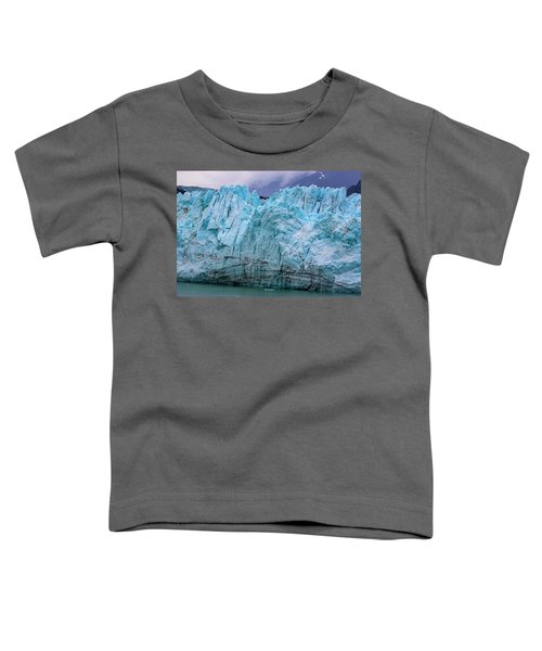 Alaskan Blue Glacier Ice Toddler T-Shirt