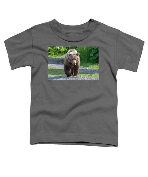 Alaskan Brown Bear Walking Towards You Toddler T-Shirt