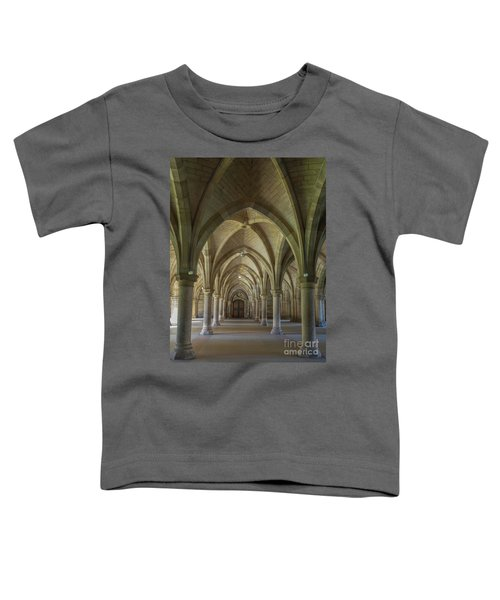 Along The Cloisters Toddler T-Shirt