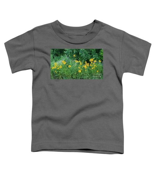 Along The Road Toddler T-Shirt