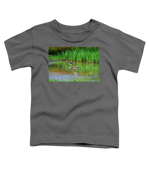 American Avocets Toddler T-Shirt