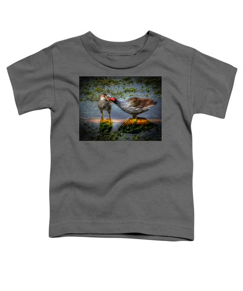 American Coot Toddler T-Shirt