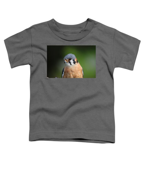 American Kestrel 5151801 Toddler T-Shirt