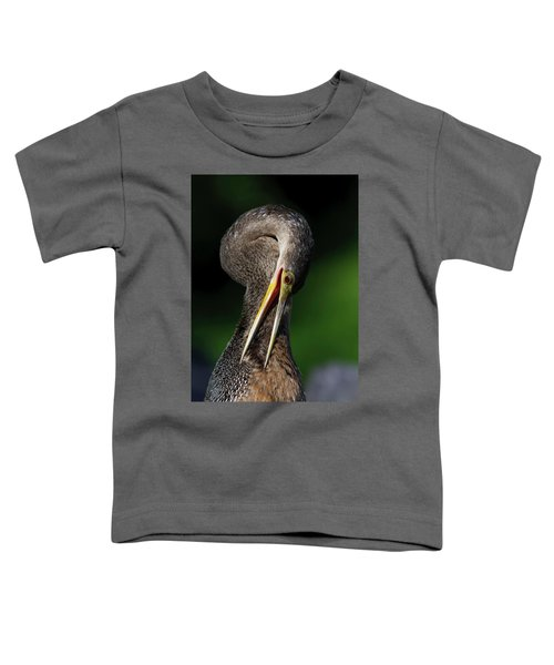 Anhinga Combing Feathers Toddler T-Shirt