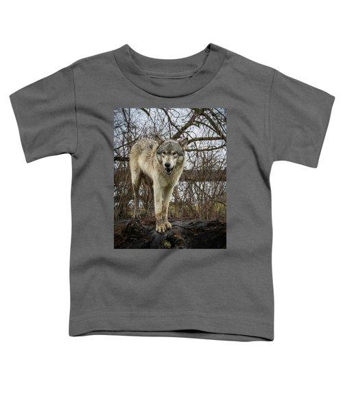 Anit I Pretty Toddler T-Shirt