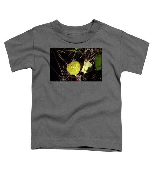 Aspen Dew Toddler T-Shirt