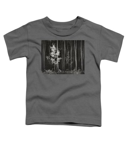 Aspens Northern New Mexico Toddler T-Shirt