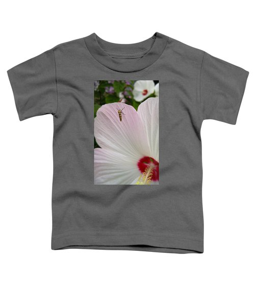 Atteva Aurea 1 Toddler T-Shirt