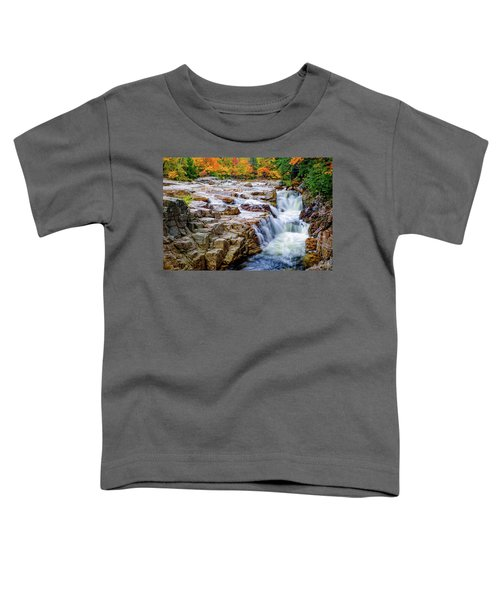 Autumn Color At Rocky Gorge Toddler T-Shirt