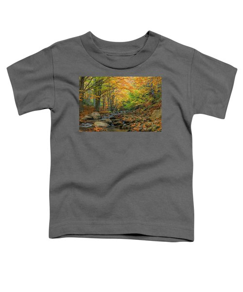 Autumn Landscape Toddler T-Shirt