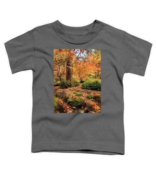 Autumn Stream In Lithia Park Toddler T-Shirt
