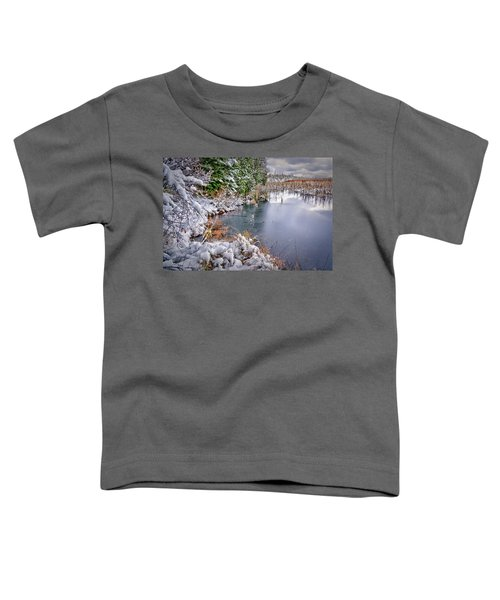 Autumn To Winter Toddler T-Shirt