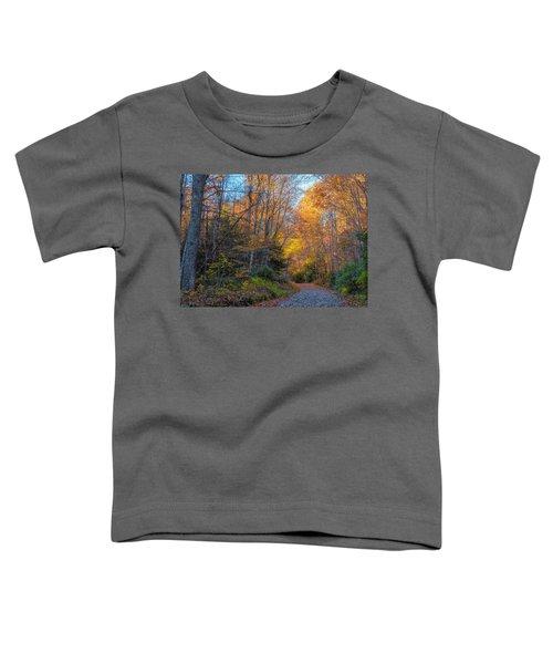 Back Road Beauty Toddler T-Shirt