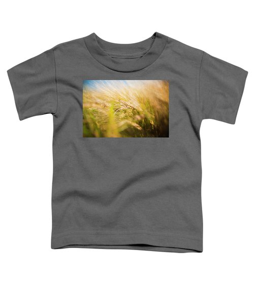 Background Of Ears Of Wheat In A Sunny Field. Toddler T-Shirt