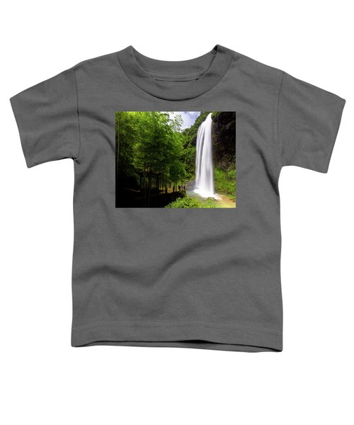 Baiyun Waterfall II Toddler T-Shirt