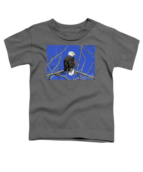 Bald Eagle And Blue Sky Toddler T-Shirt
