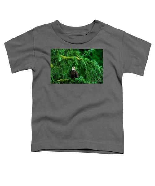 Bald Eagle In Temperate Rainforest Alaska Endangered Species Toddler T-Shirt