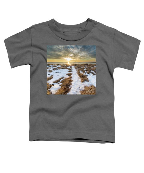 Beach In Frankfort Square Toddler T-Shirt