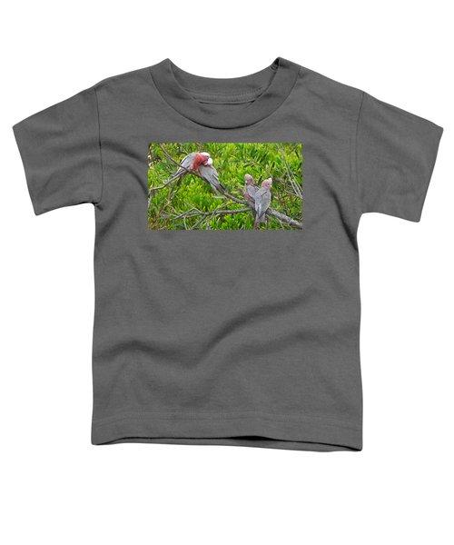 Beautiful Galah Birds With Babies. Wilsons Promontory National Park, Australia Toddler T-Shirt
