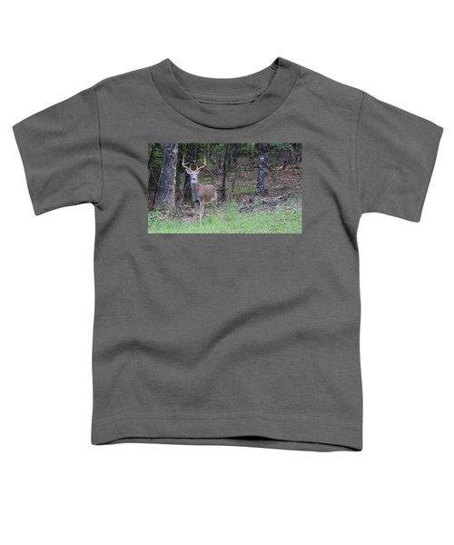 Big Buck Toddler T-Shirt
