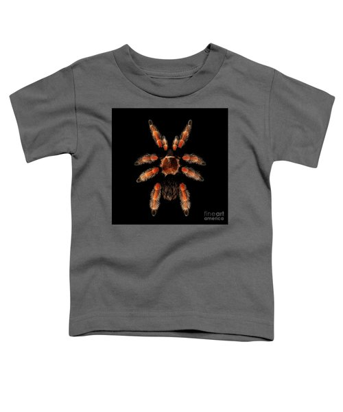 Big Spider Brachypelma Boehmei Toddler T-Shirt