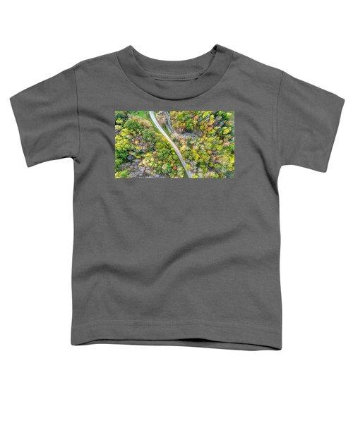 Bird Eye View Toddler T-Shirt