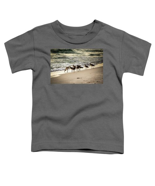 Birds On The Beach Toddler T-Shirt