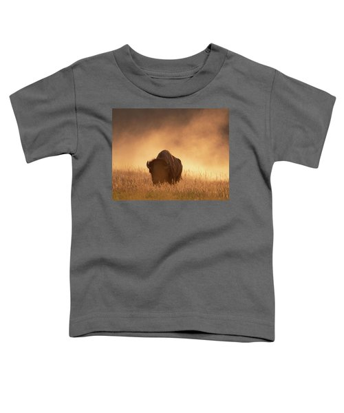 Bison In The Dust 2 Toddler T-Shirt