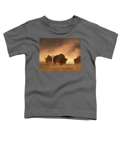 Bison In The Dust Toddler T-Shirt