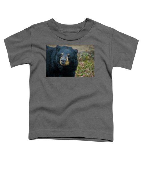 Black Bear In Deep Thought Toddler T-Shirt
