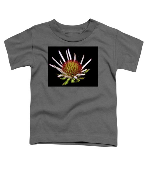 Black Sampson Toddler T-Shirt