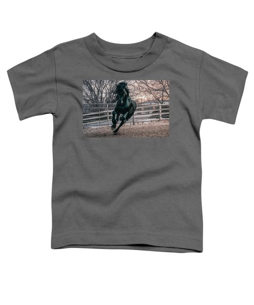Black Stallion Cantering Toddler T-Shirt