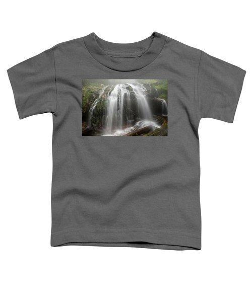 Blue Ridge Mountain Falls Toddler T-Shirt