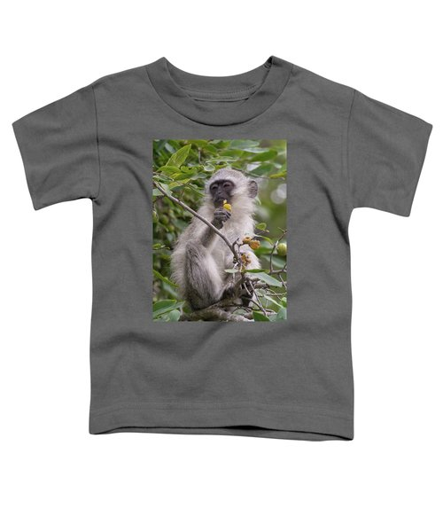 Breakfasting Monkey Toddler T-Shirt