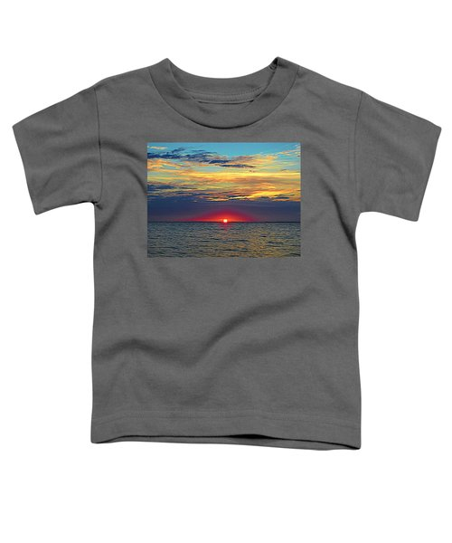 Breaking Dawn Toddler T-Shirt