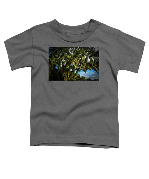 Breezy Florida Day Toddler T-Shirt