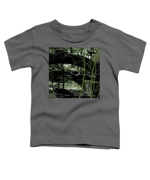 Bridge Vi Toddler T-Shirt