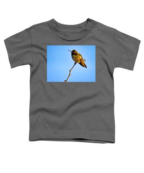 Bright Little Buddy Toddler T-Shirt