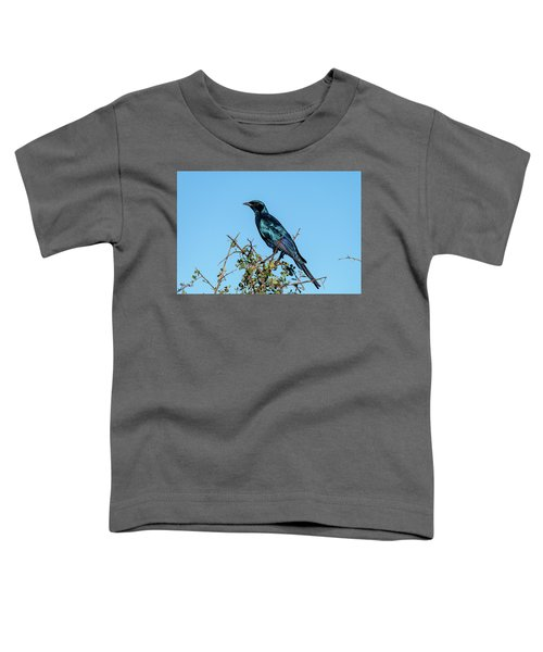 Burchell's Starling Toddler T-Shirt