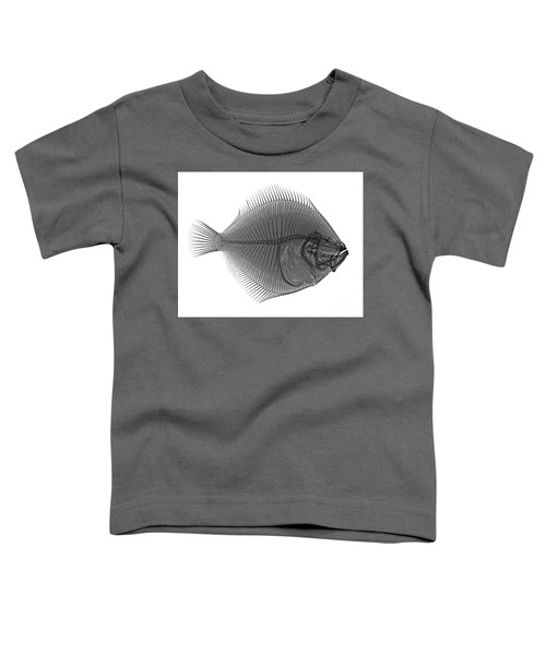 C036/0124 Toddler T-Shirt