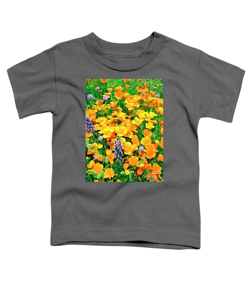 California Poppies And Betham Lupines Southern California Toddler T-Shirt