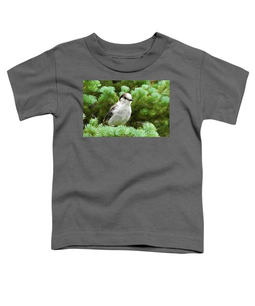 Camprobber - The Gray Jay Toddler T-Shirt