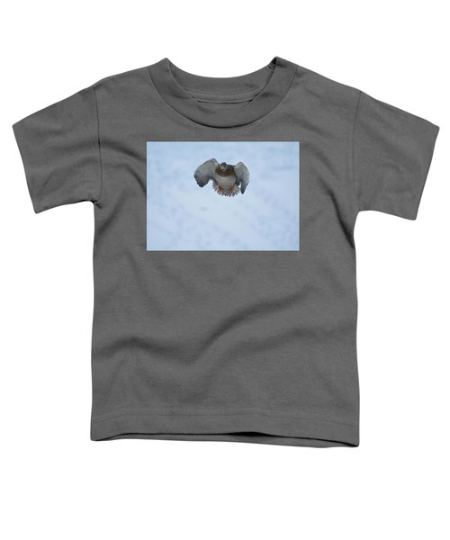 Canonball- Female Mallard Duck Toddler T-Shirt