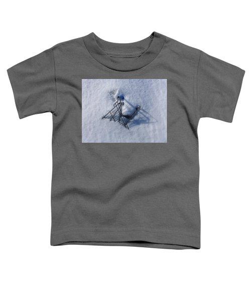 Cart Art No. 32 Toddler T-Shirt