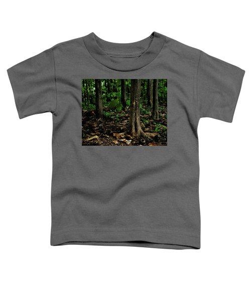 Cedar Trees Toddler T-Shirt