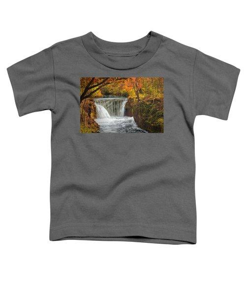 Cedarville Falls Toddler T-Shirt